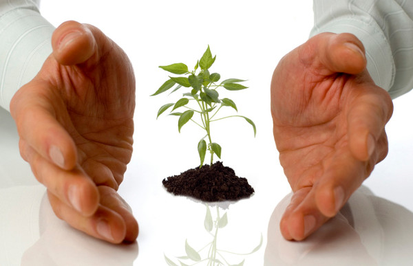 Kako i zašto angažovati konsultante da vam unaprede poslovanje?