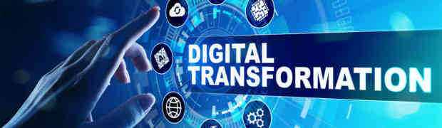 Digital transformation and e-business consulting challenges in Serbia
